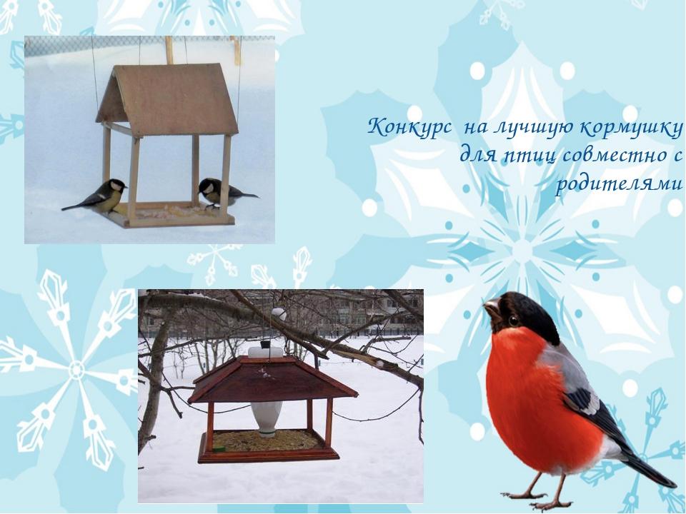 Конкурс на лучшую кормушку для птиц совместно с родителями