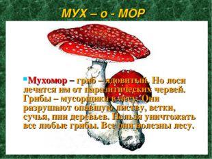 МУХ – о - МОР Мухомор – гриб – ядовитый. Но лоси лечатся им от паразитических