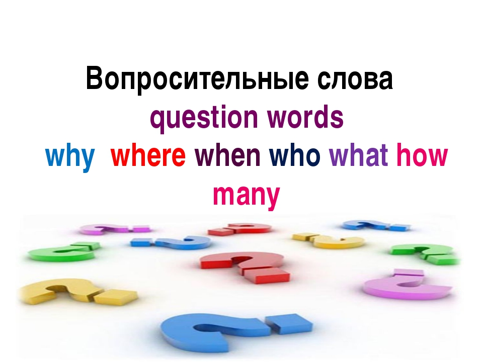 Вопросительные слова question words why where when who what how many