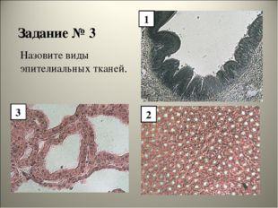 Задание № 3 Назовите виды эпителиальных тканей. 1 2 3