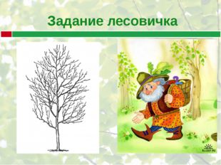 Задание лесовичка
