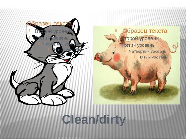 Clean/dirty
