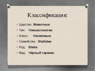Классификация: Царство: Животные Тип: Членистоногие Класс: Насекомые Семей