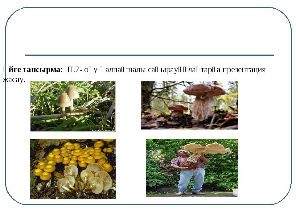 Үйге тапсырма: П.7- оқу Қалпақшалы саңырауқұлақтарға презентация жасау.