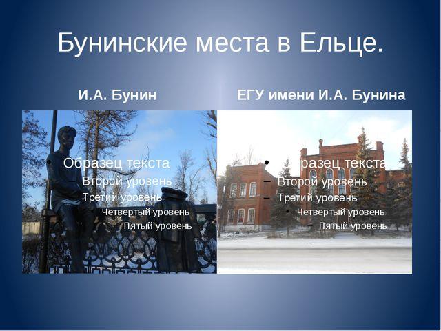 Бунинские места в Ельце. И.А. Бунин ЕГУ имени И.А. Бунина
