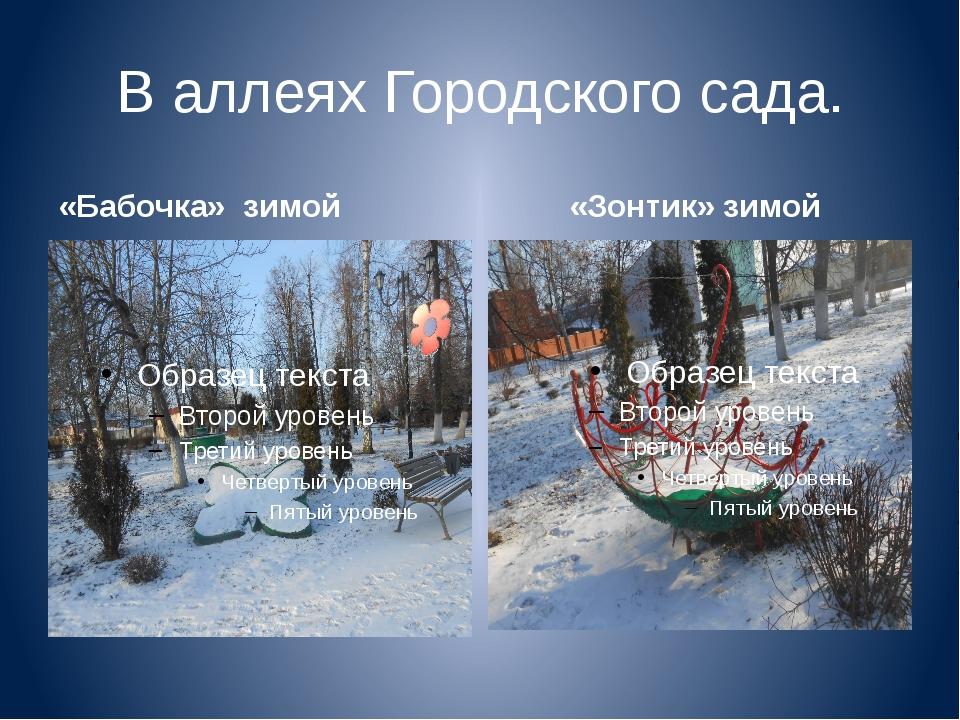 В аллеях Городского сада. «Бабочка» зимой «Зонтик» зимой