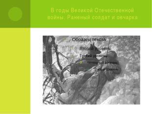 В годы Великой Отечественной войны. Раненый солдат и овчарка