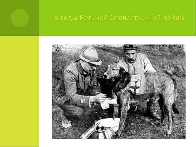 в годы Великой Отечественной войны