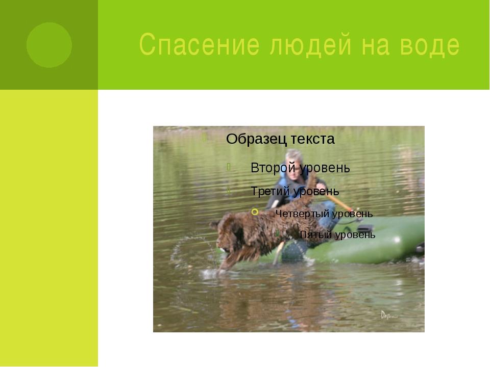Спасение людей на воде