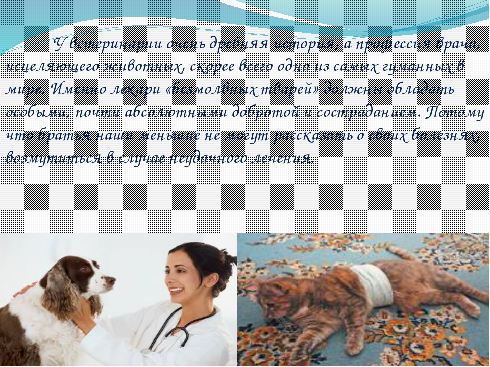 У ветеринарии очень древняя история, а профессия врача, исцеляющего животны...