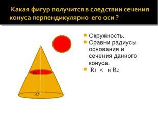 Окружность. Сравни радиусы основания и сечения данного конуса. R1 < и R2 R1 R2