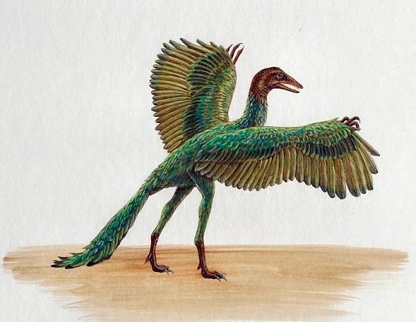 Ответы@Mail.Ru: А у Вас динозавры уже прилетели?