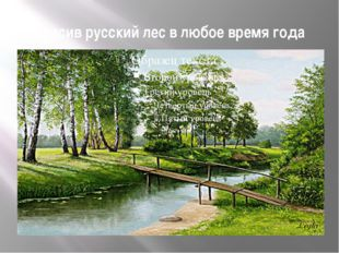 Красив русский лес в любое время года