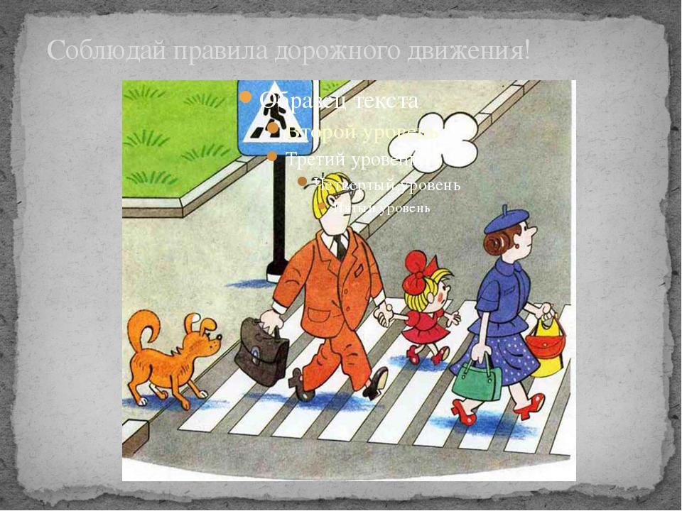 Соблюдай правила дорожного движения! Знай и соблюдай правила дорожного движе...
