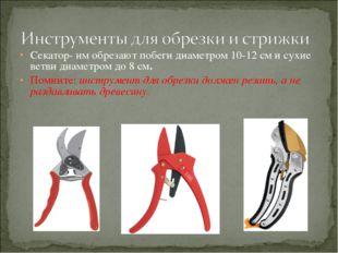 Секатор- им обрезают побеги диаметром 10-12 см и сухие ветви диаметром до 8 с