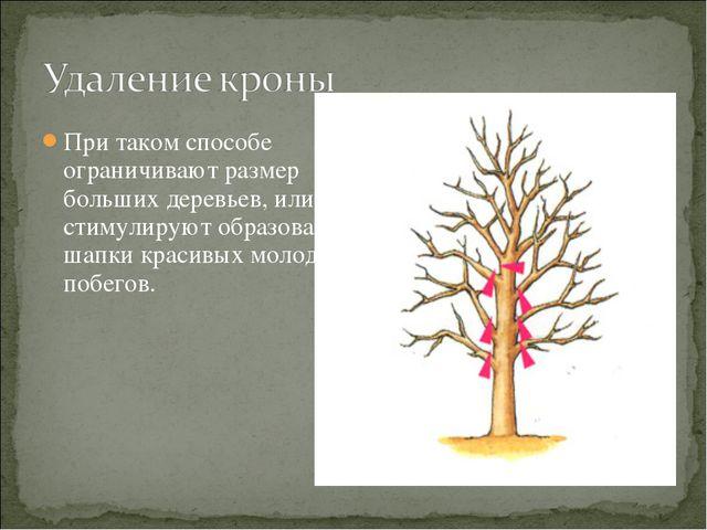 При таком способе ограничивают размер больших деревьев, или стимулируют образ...