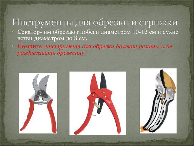 Секатор- им обрезают побеги диаметром 10-12 см и сухие ветви диаметром до 8 с...