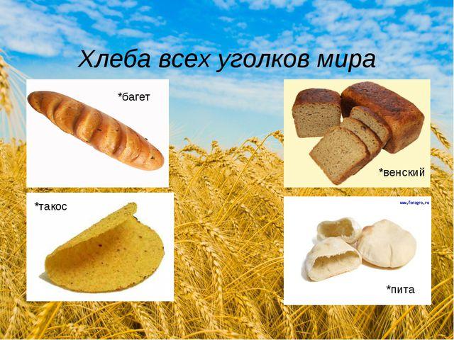 Хлеба всех уголков мира *багет *венский *такос *пита