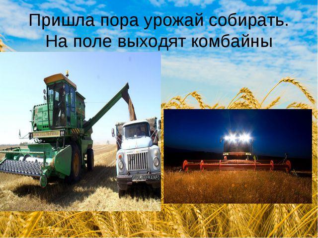 Пришла пора урожай собирать. На поле выходят комбайны