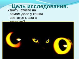 Цель исследования. Узнать, отчего на самом деле у кошки светятся глаза в темн
