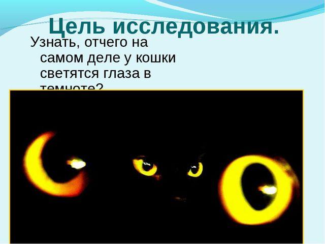 Цель исследования. Узнать, отчего на самом деле у кошки светятся глаза в темн...