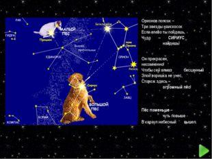 Орионов поясок – Три звезды наискосок Если влево ты пойдешь, Чудо – СИРИУС