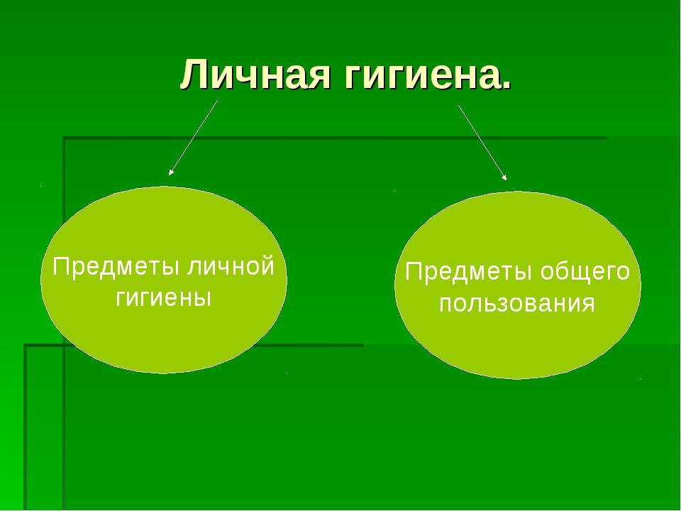 Личная гигиена. Предметы личной гигиены Предметы общего пользования