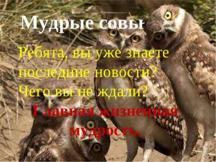 Мудрые совы Мудрые совы Ребята, вы уже знаете последние новости? Чего вы не ж