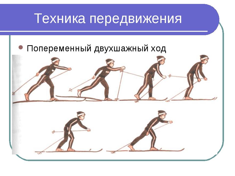 Техника передвижения Попеременный двухшажный ход