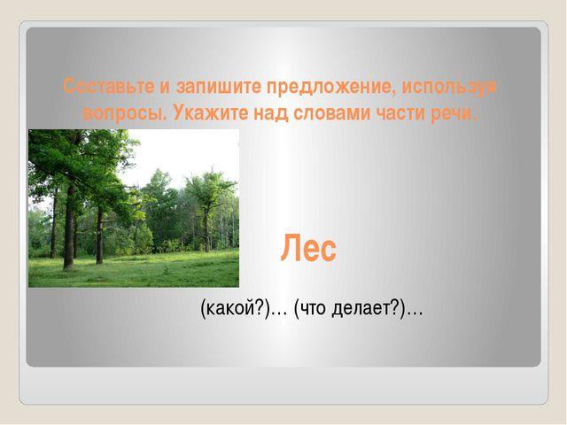 Лес (какой?)… (что делает?)… Составьте и запишите предложение, используя вопр...