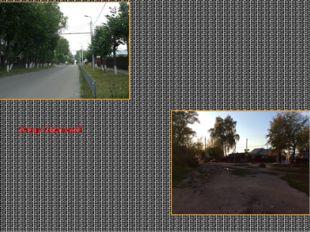 Улица Окуловой