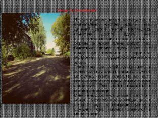 Я стою в самом начале своей улицы и внимательно смотрю вдоль нее. Длинной сер