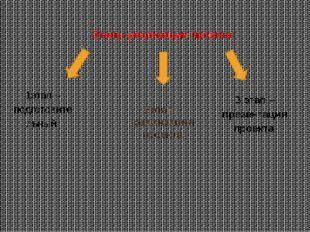 Этапы реализации проекта: 1этап – подготовительный.  2этап – реализация прое