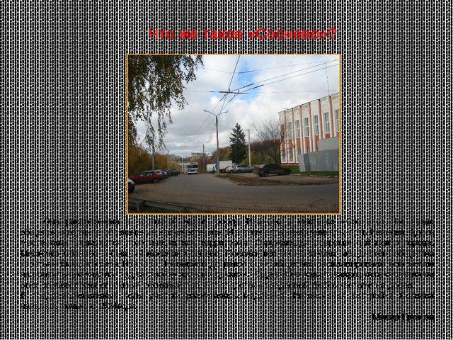 Она расположена в восточной части города Иваново в местечке «Соснево». Не ве...