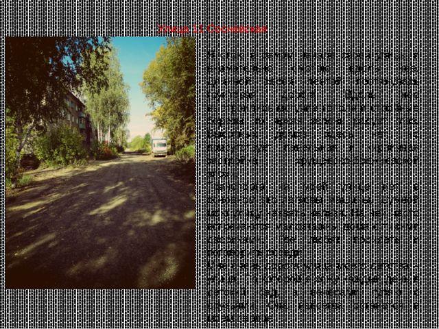 Я стою в самом начале своей улицы и внимательно смотрю вдоль нее. Длинной сер...