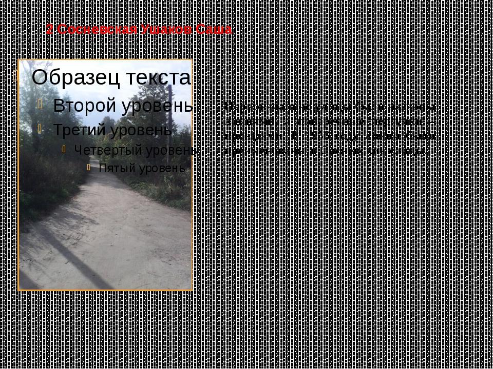 2 Сосневская Ушаков Саша Первоначально улицы были названы линиями, а поперечн...