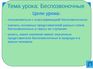 Беспозвоночные Кишечно-полостные Черви Моллюски Членисто-ногие Иглокожие Пред