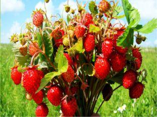 Лето - пора фруктов и ягод. Самое время сделать из кругов модульную аппликац