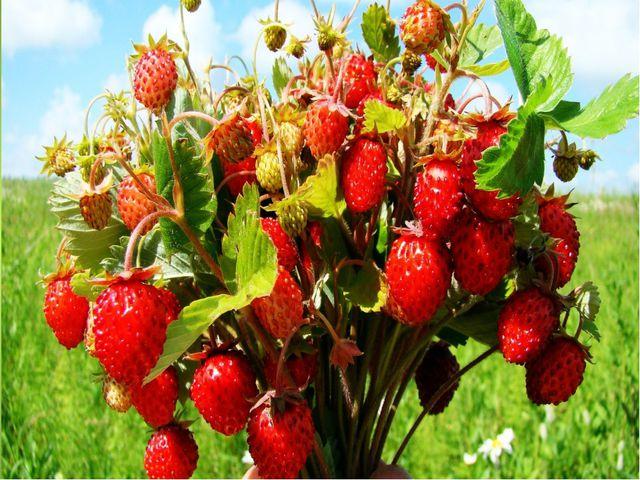 Лето - пора фруктов и ягод. Самое время сделать из кругов модульную аппликац...