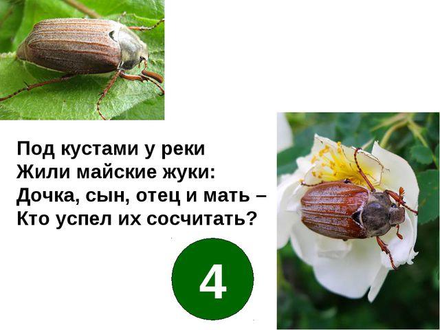 Под кустами у реки Жили майские жуки: Дочка, сын, отец и мать – Кто успел их...