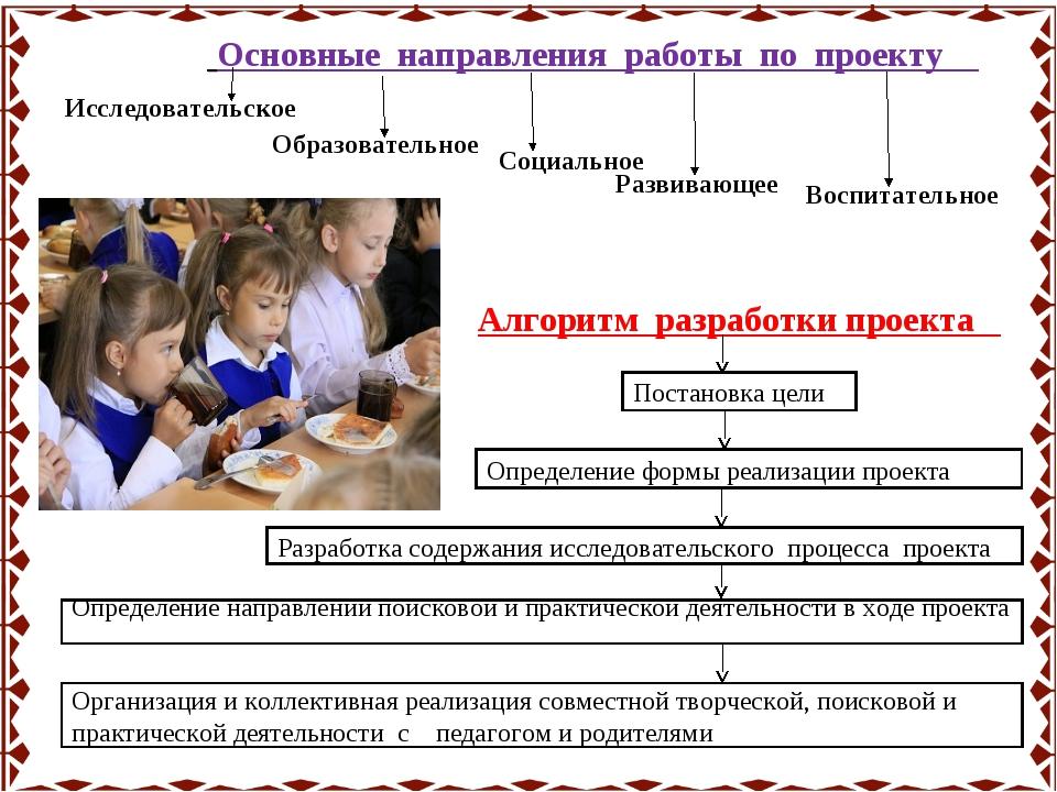Основные направления работы по проекту Развивающее Социальное Образовательно...