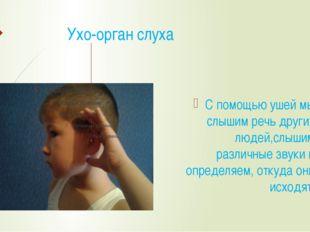 Ухо-орган слуха С помощью ушей мы слышим речь других людей,слышим различные