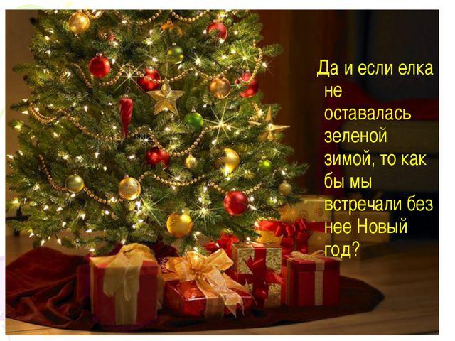Да и если елка не оставалась зеленой зимой, то как бы мы встречали без нее Н...