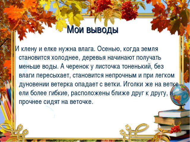 Мои выводы И клену и елке нужна влага. Осенью, когда земля становится холодне...