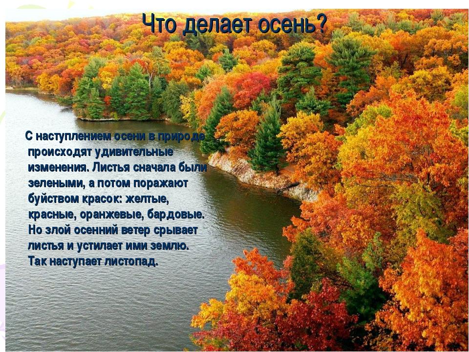 Что делает осень? С наступлением осени в природе происходят удивительные изме...