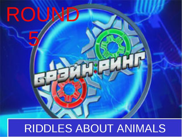 ROUND 5 RIDDLES ABOUT ANIMALS