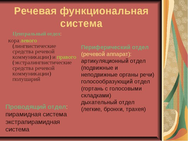 Речевая функциональная система Центральный отдел: кора левого (лингвистическ...