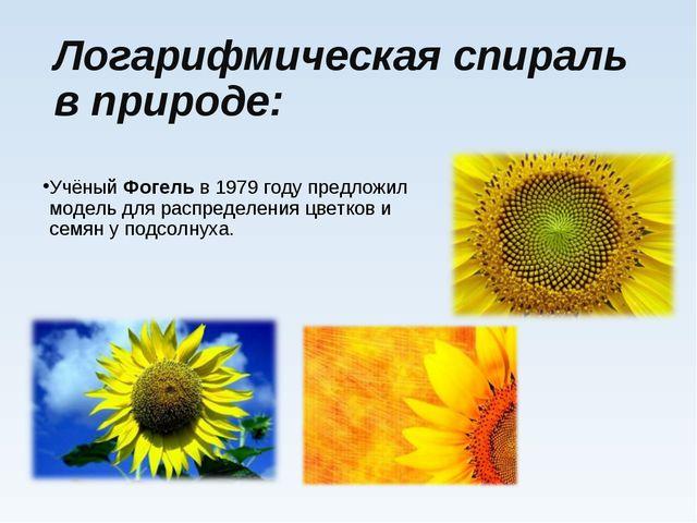 Логарифмическая спираль в природе: Учёный Фогель в1979 годупредложил модель...