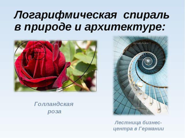 Логарифмическая спираль в природе и архитектуре: Голландская роза Лестница би...