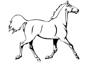 http://www.supercoloring.com/wp-content/main/2008_11/horse-is-running-coloring-page.gif